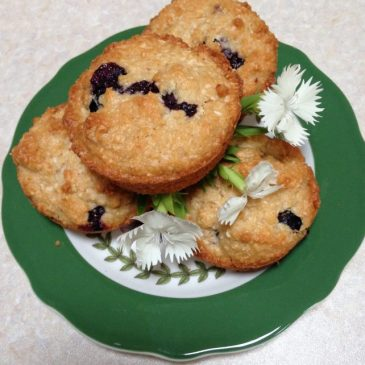 Blueberry and Coconut Muffins (gluten free)