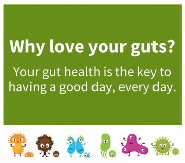 Why love your guts?